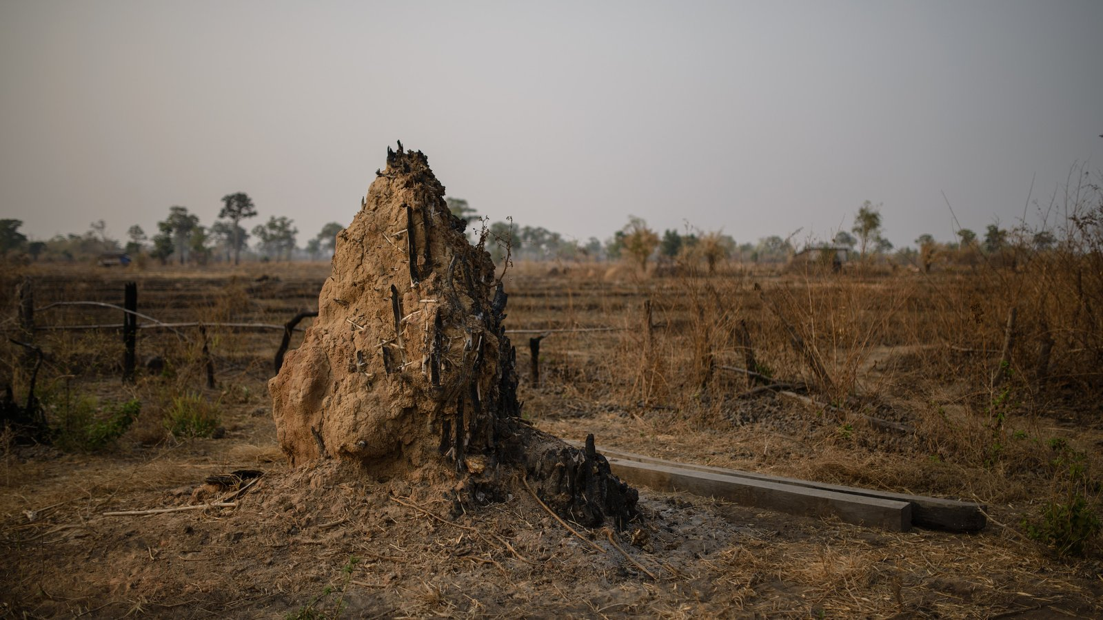 Charred termite mound in the remnants of homes burnt down by HAGL