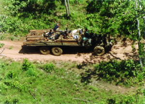 Truck with illegal timber, Cambodia