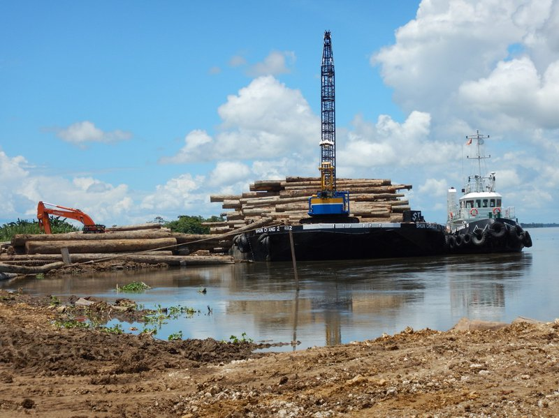 RS4940_Summit's Sepik River log depot 4-scr.JPG