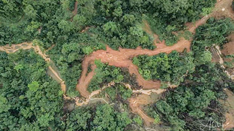 RS5976_Drone photo of destructive and unsustainable logging in Choiseul, Solomon Islands - 3-scr.jpg