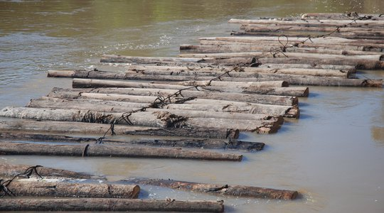 Timber on the River Tamaya3