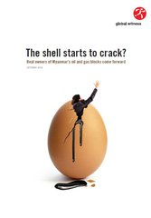 Shell crack cover